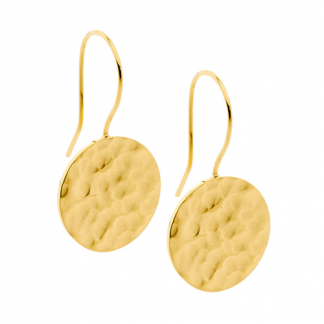 S/Steel Gold Plate Hammered Earrings_0