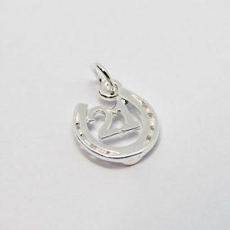 Stg/silver Charm_0