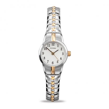 Two Tone Watch_0