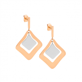 Stainless Steel/Rose Gold Plated Earrings_0